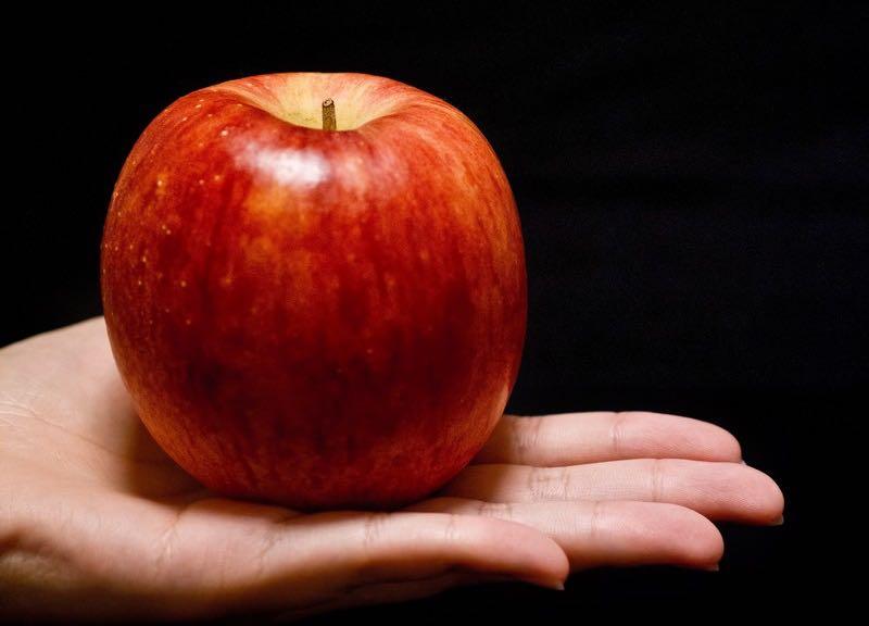間違いだらけのダイエット ダイエットには食事が重要 運動1割 食事9割