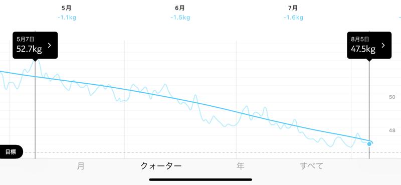 SIXPAD シックスパッドダイエット 結果 成功 減量