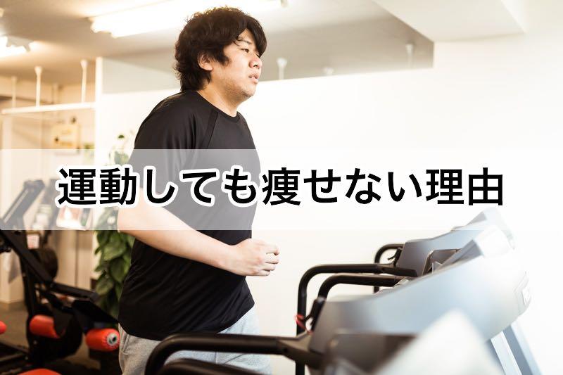 運動しても痩せない理由