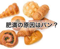 肥満 原因 パン 小麦